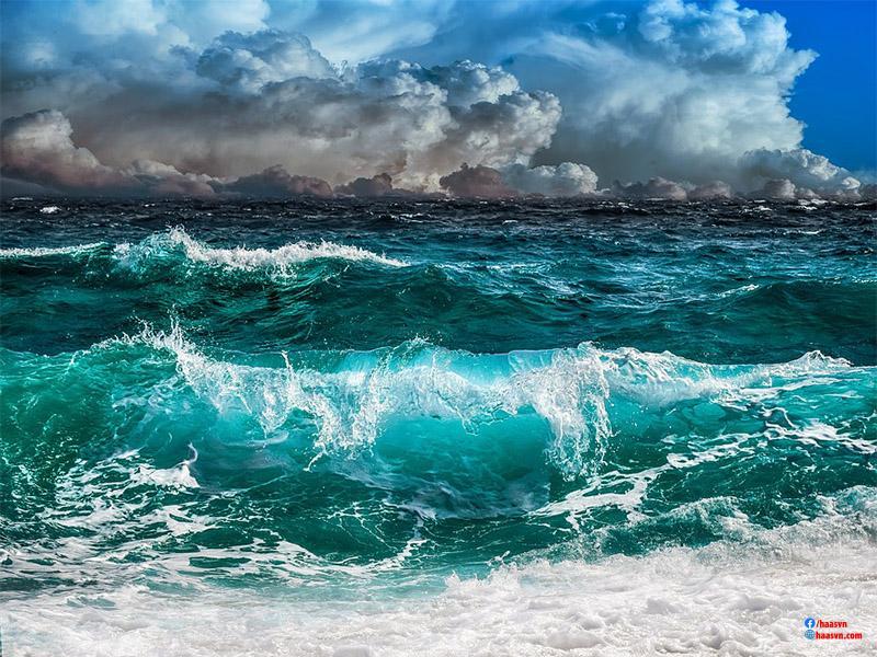 sóng biển là gì?