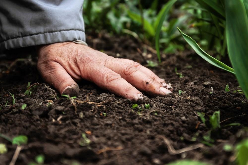 Việc phân cấp các loại đất đóng vai trò quan trọng đối với việc xây dựng công trình