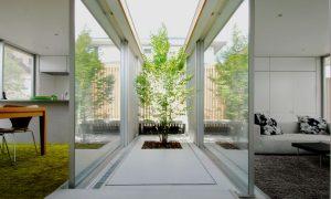 Mẫu thiết kế nhà phố lấy gió từ giếng trời 1